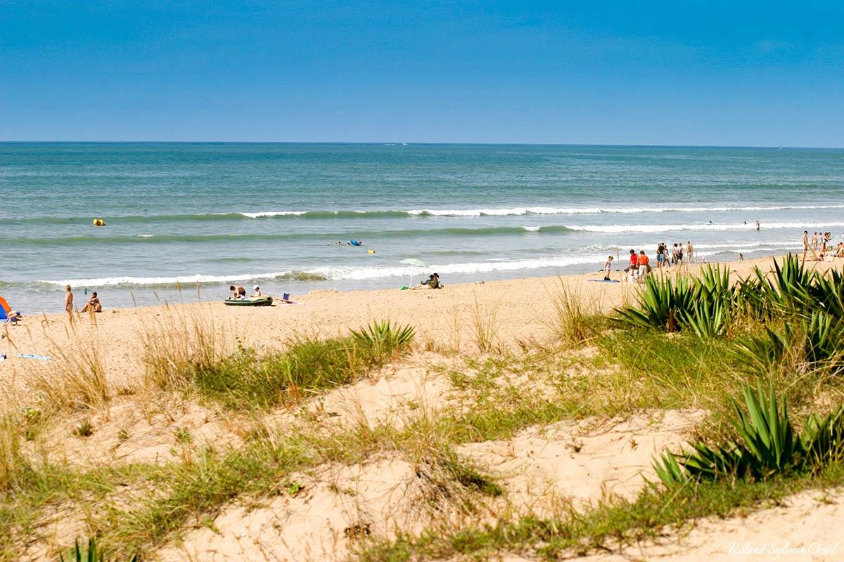 dune la tranche sur mer